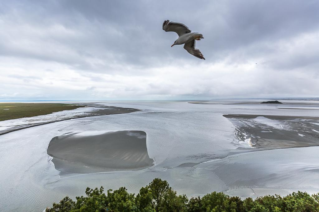 Las gaviotas sobrevuelan la Abadía, mientras la marea sube rápidamente
