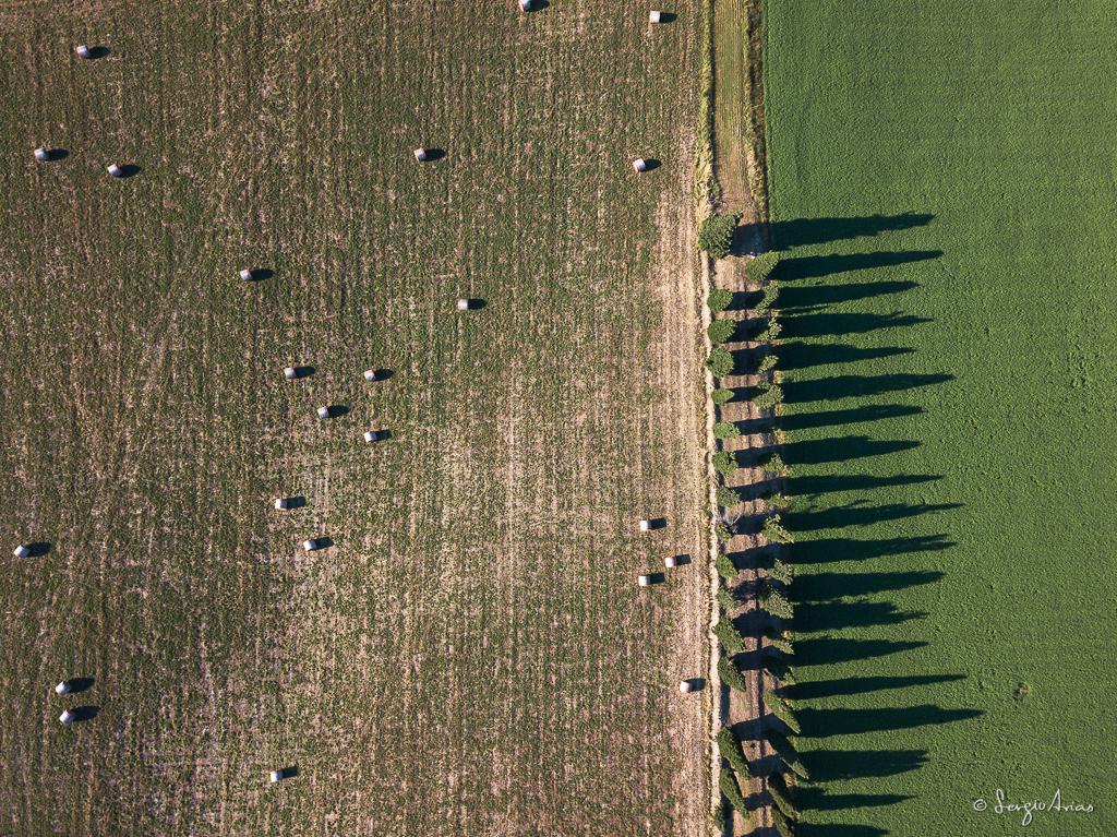 La sombra que forman los cipreses son muy interesantes desde el aire